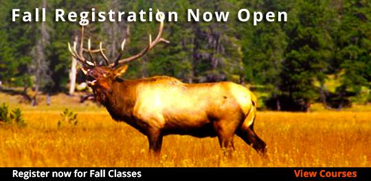 Fall Semester classes now open
