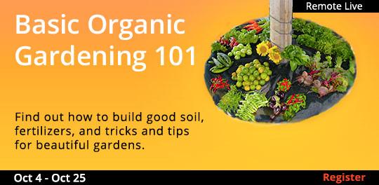 Basic Organic Gardening 101 (Remote Live), 10/04/2020 - 10/25/2020