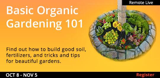 Basic Organic Gardening 101 (Remote Live), 10/03/2021 - 10/24/2021