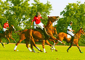 Polo in Paradise: Santa Barbara Polo Match - August 13, 2017