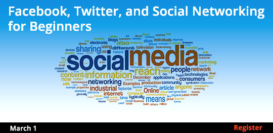 Facebook, Twitter, and Social Networking for Beginners 3/1