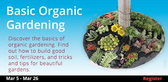 Basic Organic Gardening 101 3/5 - 3/26