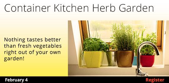 Container Kitchen Herb Gardening 2/4