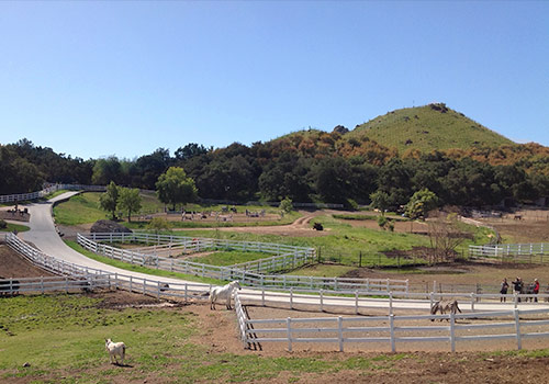 Saddlerock Ranch, home of  the James Wyllie Equestrian Education Center