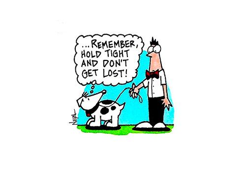 Neal Yamamoto cartoon