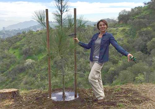 In honor of her volunteer work, TreePeople plant Paola a tree.at their headquarters