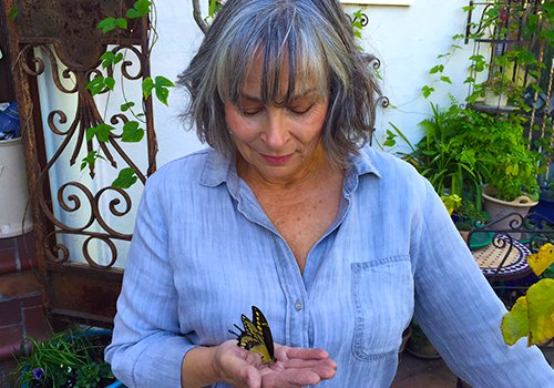 Nicola McGee holds a bird-proof cage that protects butterfly eggs and chrysalis